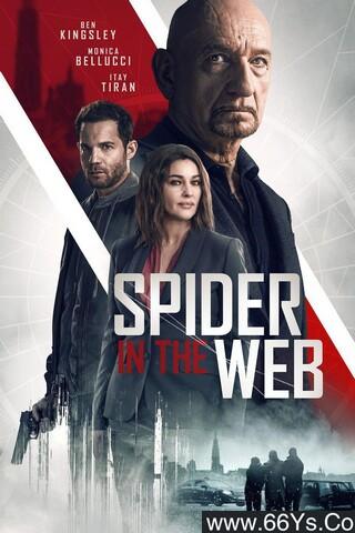 网中蜘蛛高清在线观看
